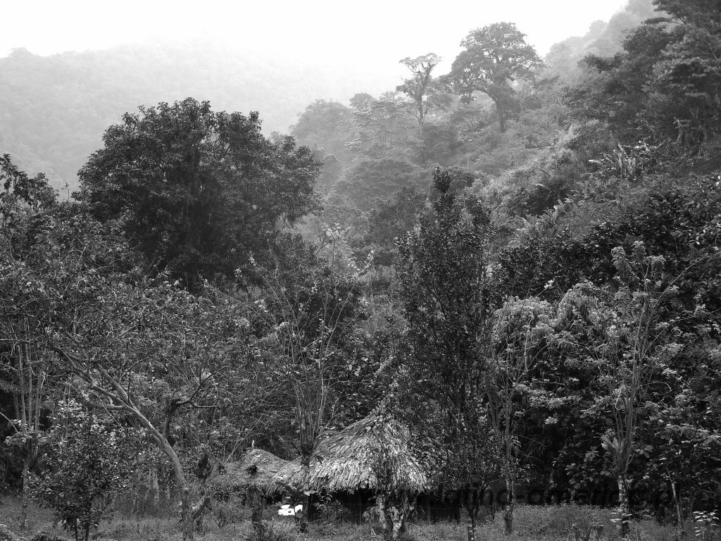 45-Kolumbia - Ciudad Perdida (7)
