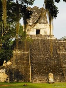 Znana jako świątynia 'Ah Cacao' lub świątynia Wielkiego Jaguara. Pełni funkcje grobowca, poświecona Jasaw Chan K'awil który był w niej pochowany w 734r n.e.