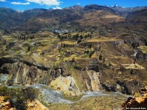 Peru Kanion Colca28