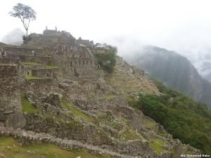 Peru Machu Picchu 21