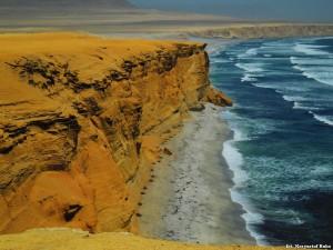 Peru Paracas 16